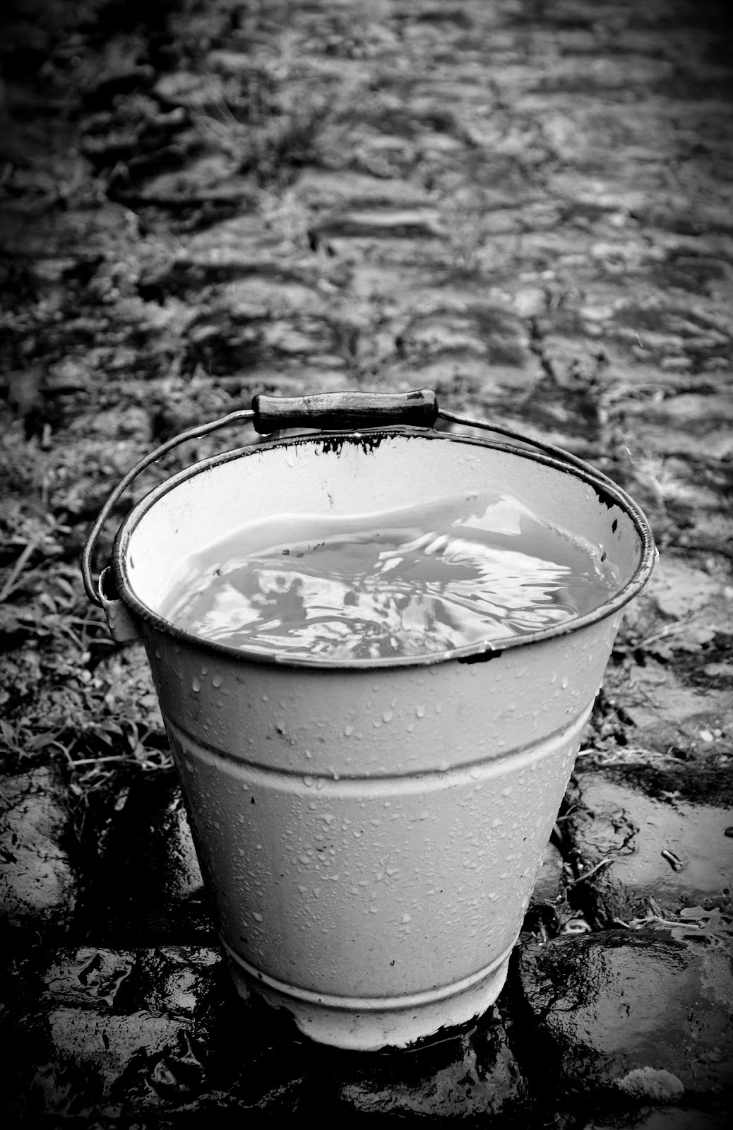 A black and white photo of a bucket collecting rainwater.