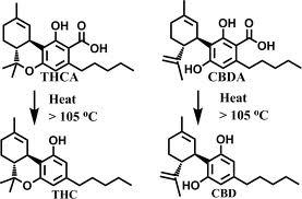 THC THCA CBD CBDA