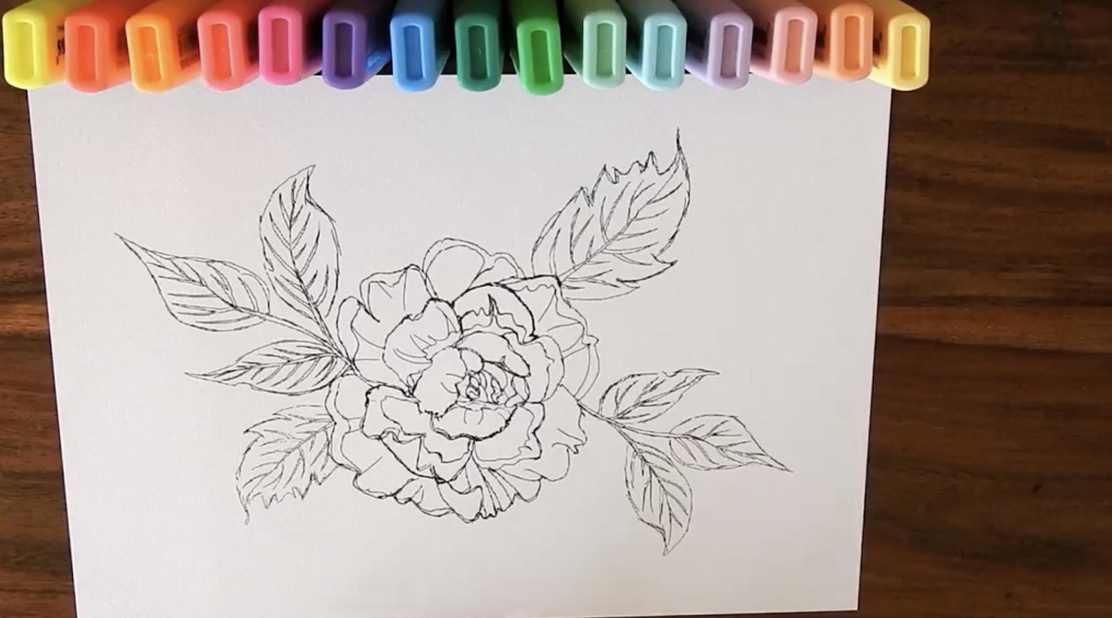 drawn flower
