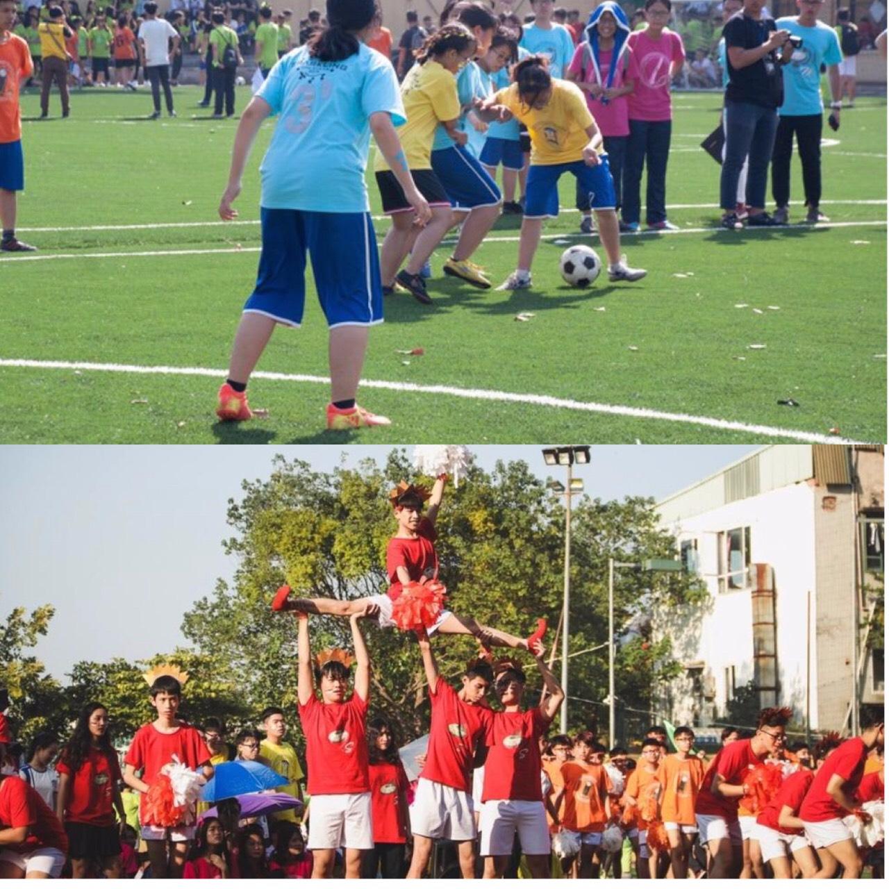 Bật mí bí mật của 3 ngôi trường nổi tiếng ở Hà Nội: Có 1 sở thú ngay trong trường, học hành bị stress quá thì rủ nhau trốn lên cửa trời - Ảnh 15.