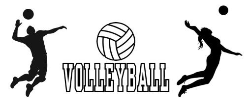 Image result for co-ed volleyball pictures