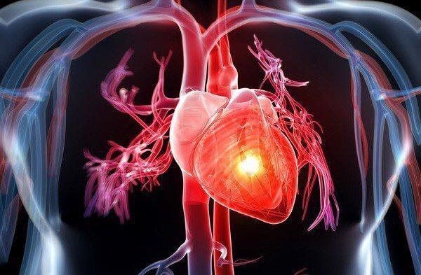tim-mạch-wellbeing