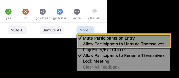 "a screenshot showing 'Mute participants on Entry"" checked and ""Allow participants to unmute themselves"" unchecked"