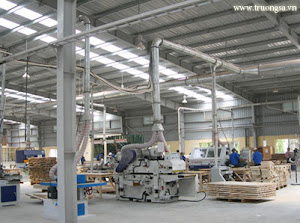Nhà máy gỗ...