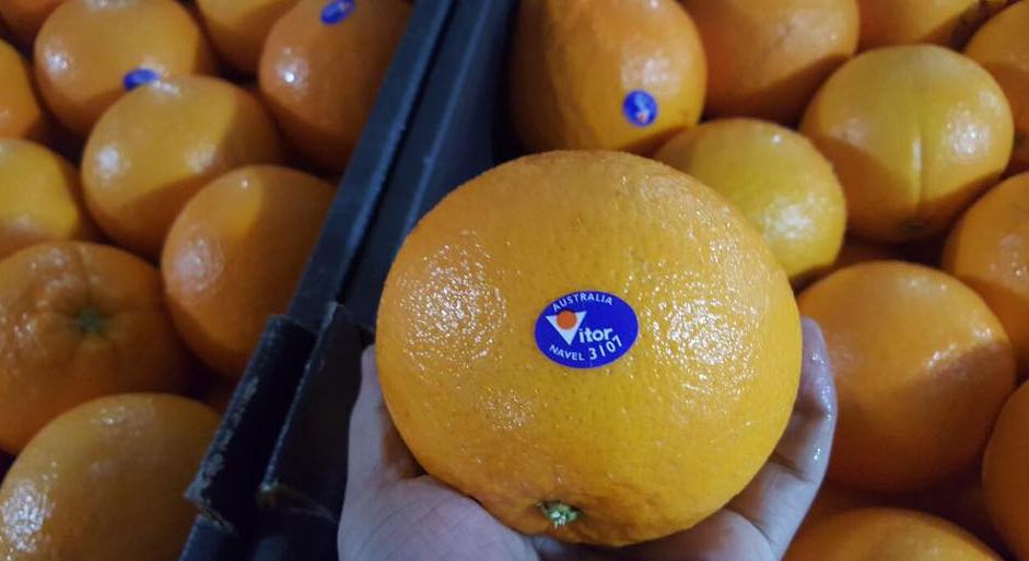 Có thể chọn mua cam nhập khẩu theo xuất xứ