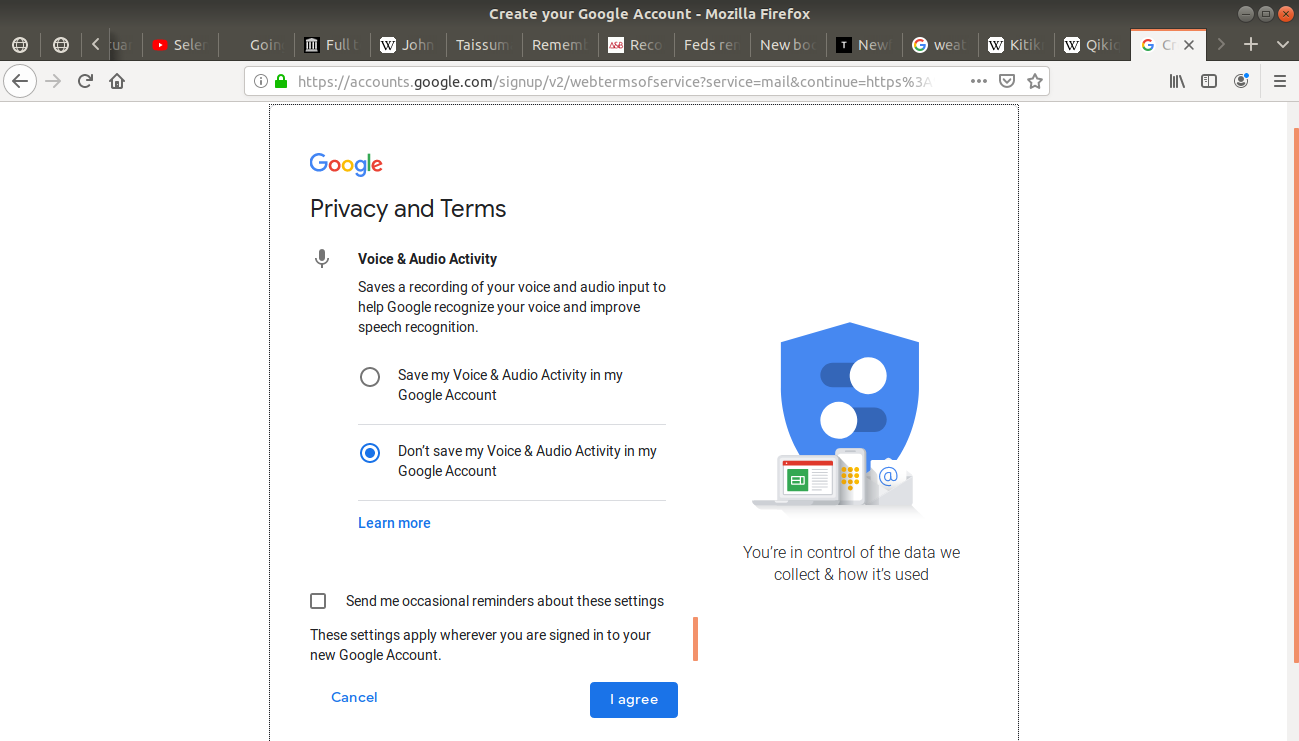 "Privacy and Terms ""voice and audio activity"" option open on Gmail"