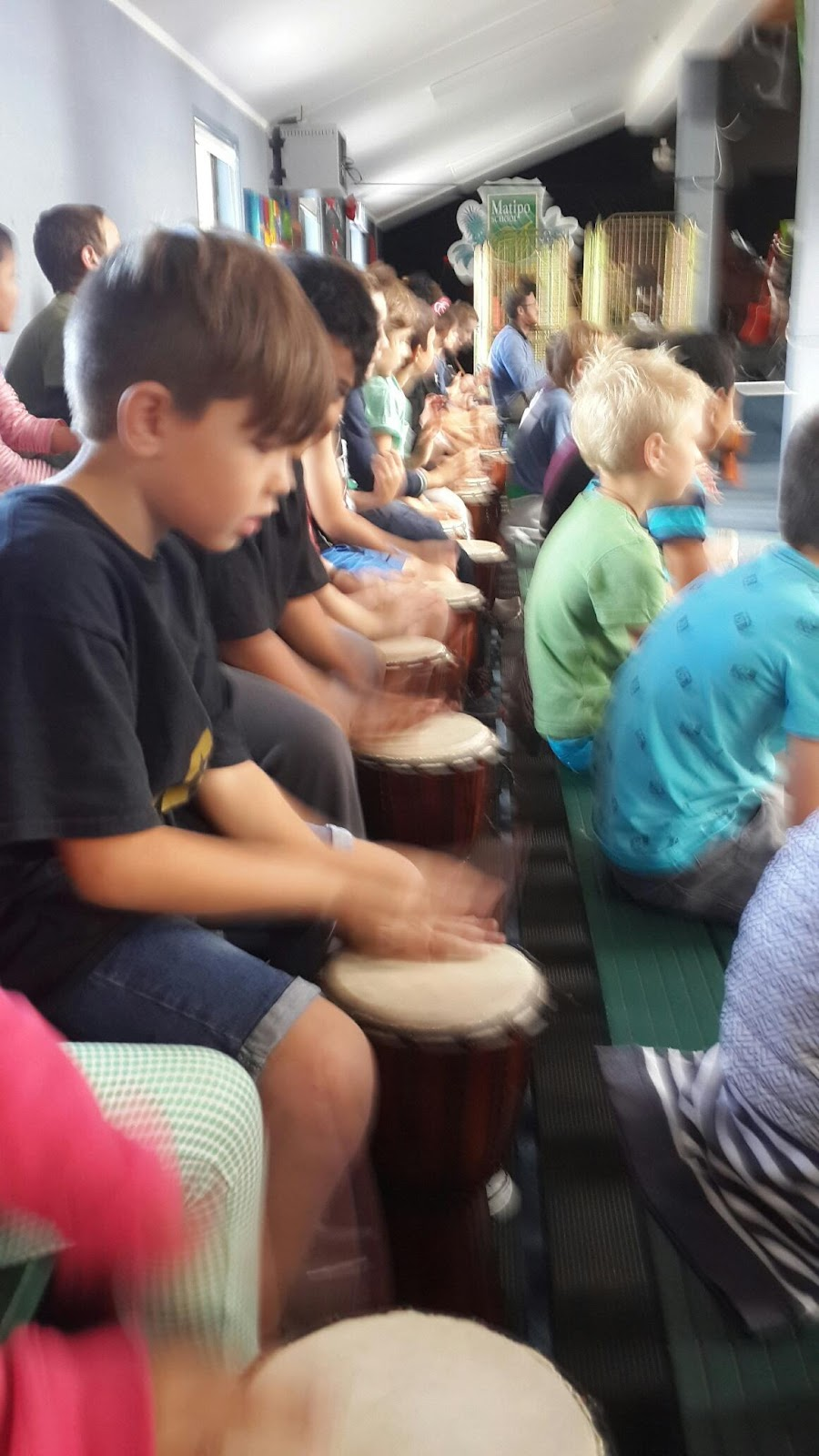 C:\Users\Michael\Downloads\drumshow\20160519_111016_resized_1.jpg