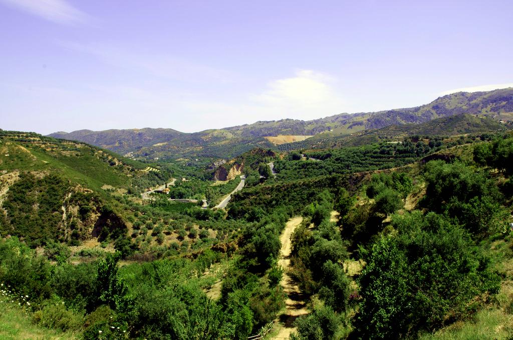 botanical park crete.jpg