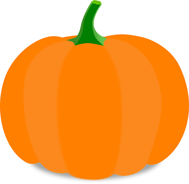 Pumpkin, Cartoon, Orange, Stem