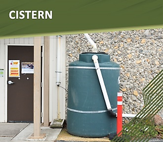 Apply for a Cistern rebate