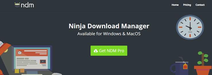 Ninja Download Managger