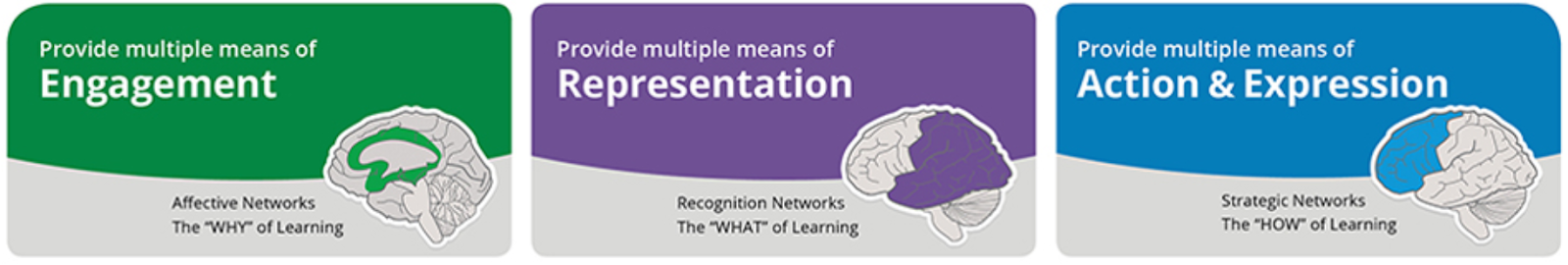 the 3 principles of UDL: Engagement, Representation, Action & Expression