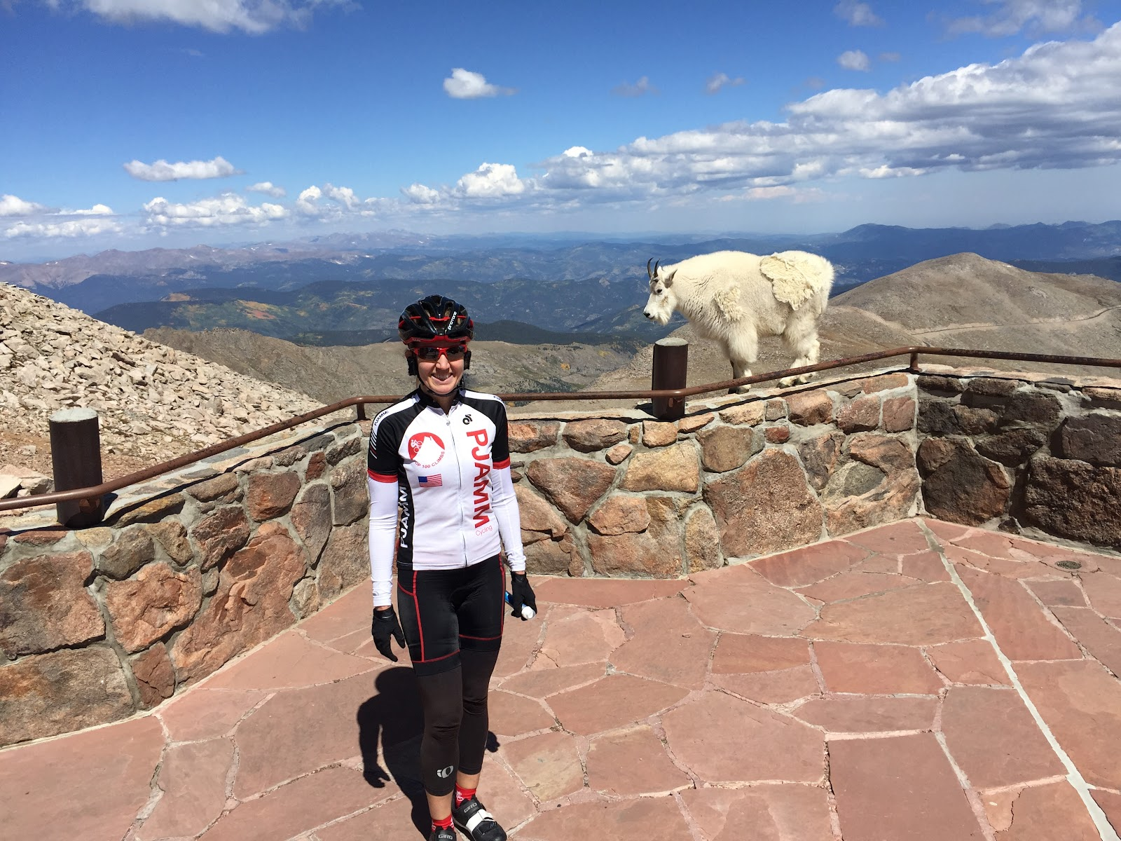 Cyclist and Mountain Goat at Summit of Mount Evans, Colorado