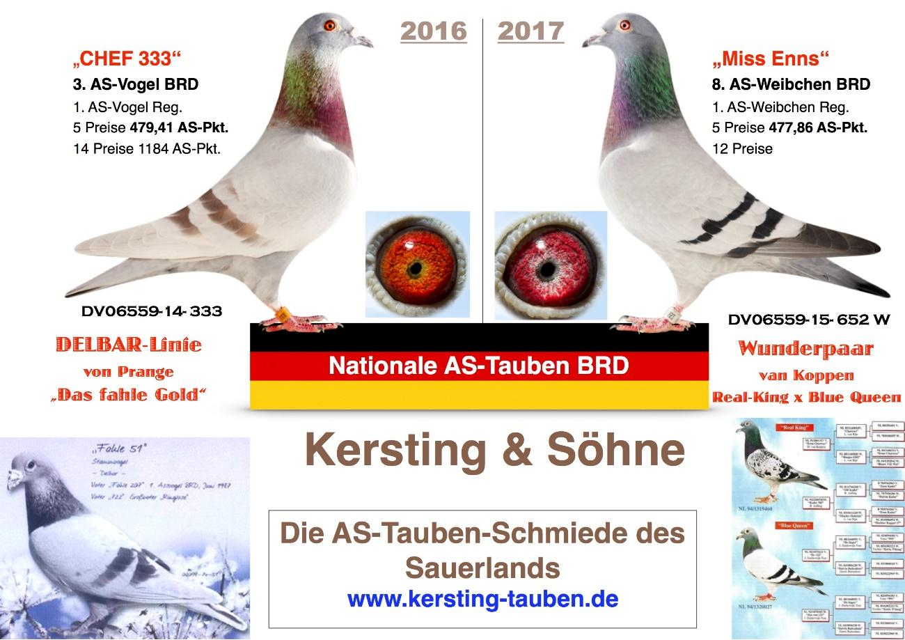 http://www.kersting-tauben.de/cms/upload/bilder/AS-Tauben_Collage_2016-2017_V2.jpg