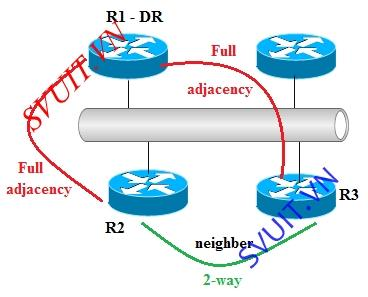 neighber and adjacency EIGRP