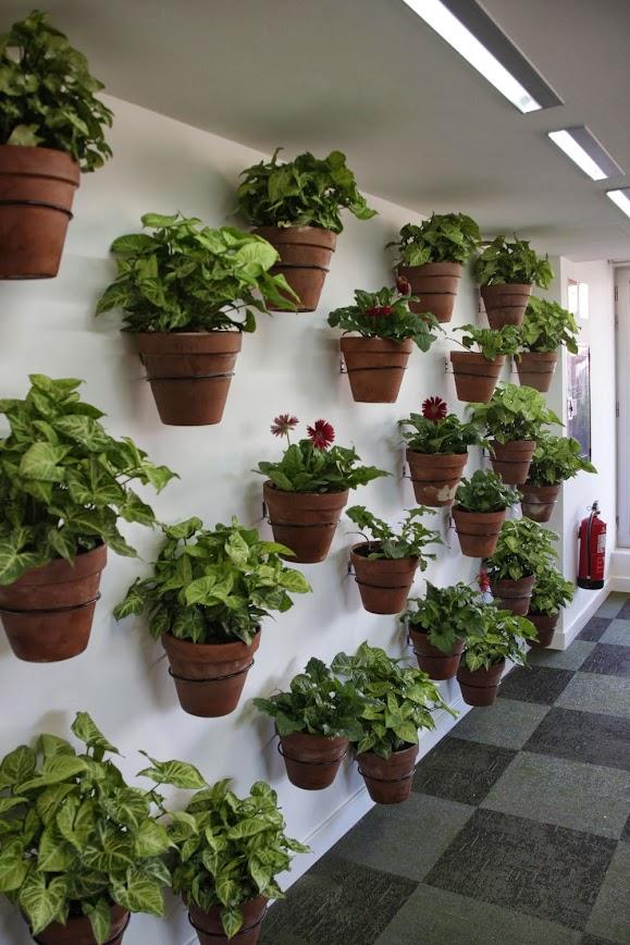 jardines verticales en Madrid jardín vertical paisajismo