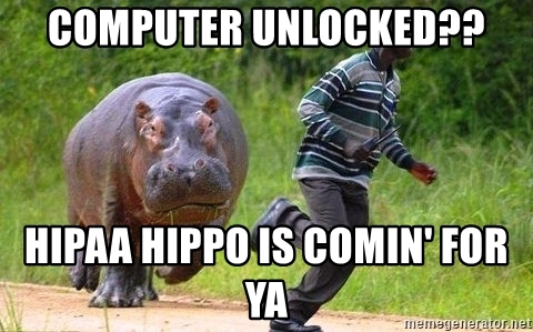 Image result for hipaa hippo