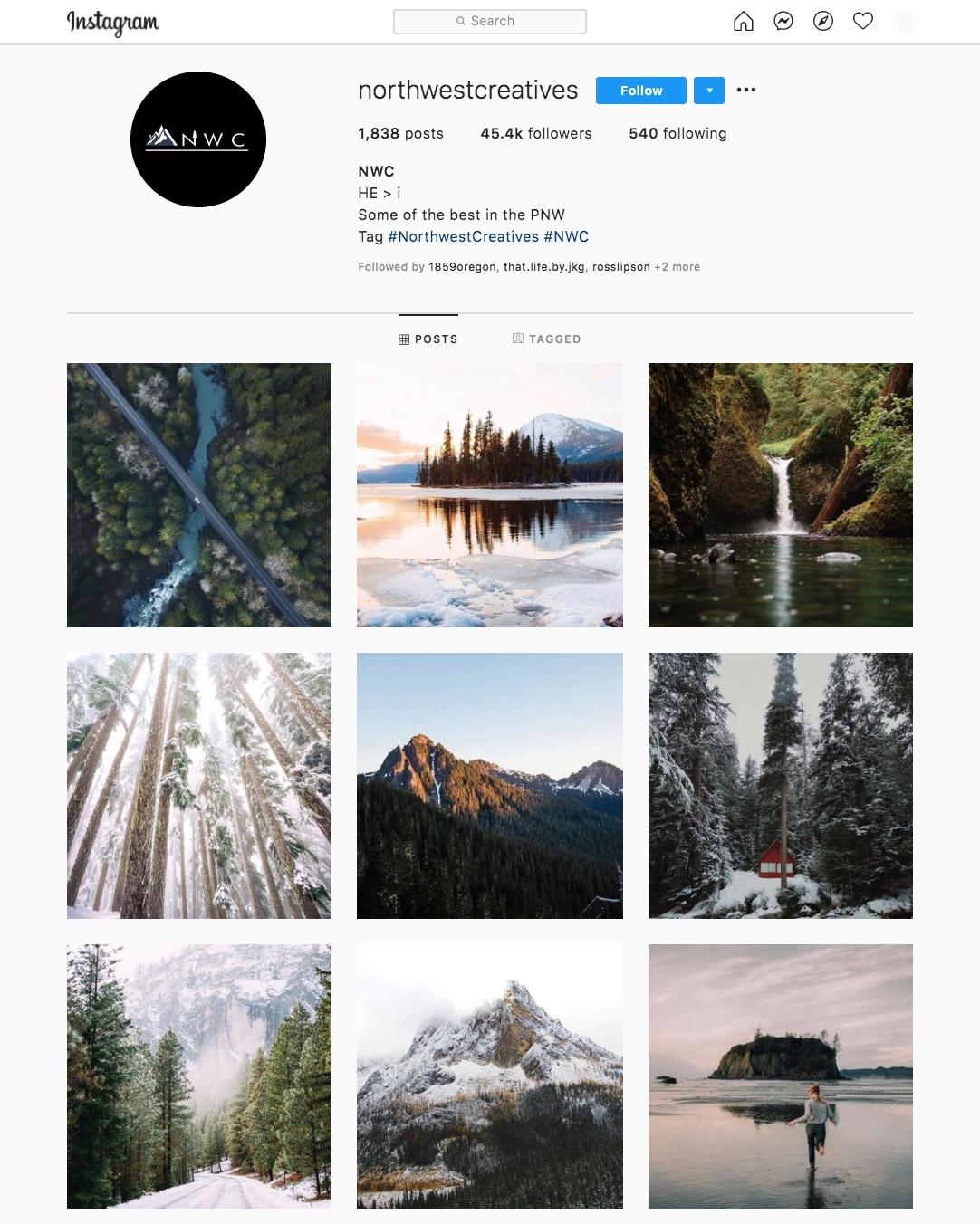 organic instagram growth
