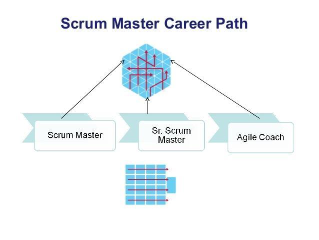 Scrum Master Training: Understand the Basics