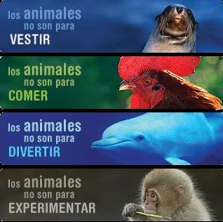 ecología, ambiente, activismo.