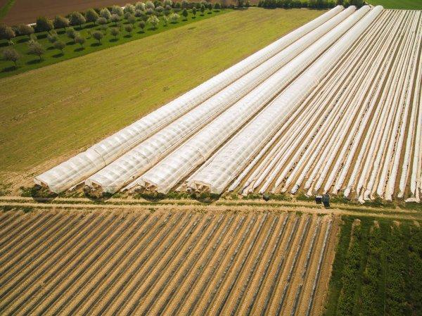інвестиції в сільгосп землі Брок