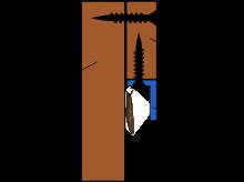 cornière anti-limace