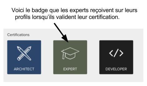 badge french.jpg