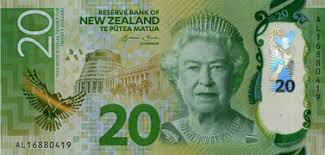 Image result for new zealand money