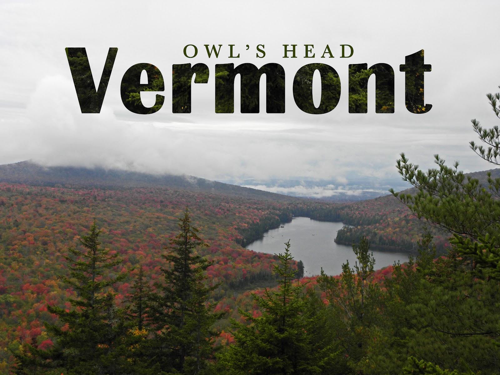 Owl's head post card.jpg