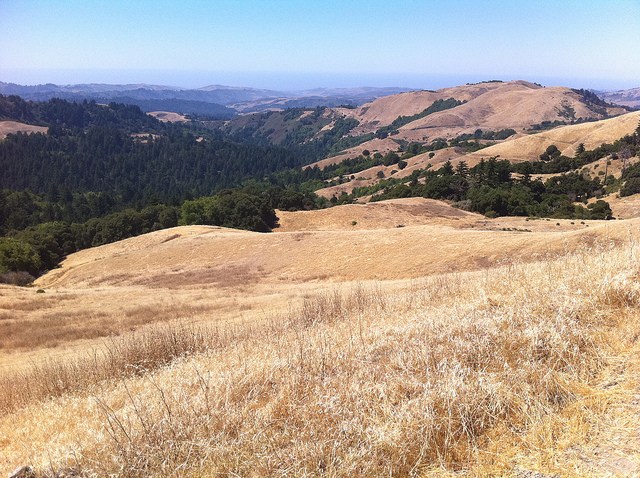 Travel: The Beautiful Santa Cruz Mountains