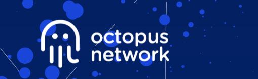 Octopus Network