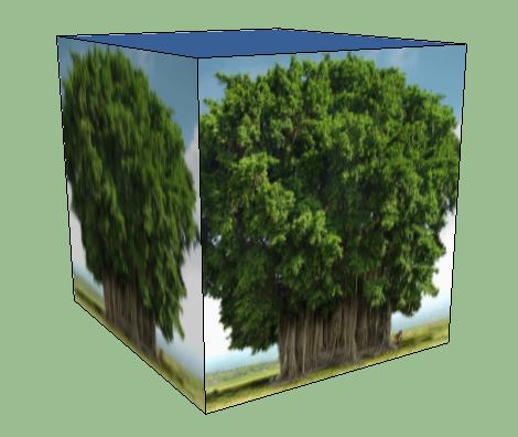дерево2.png