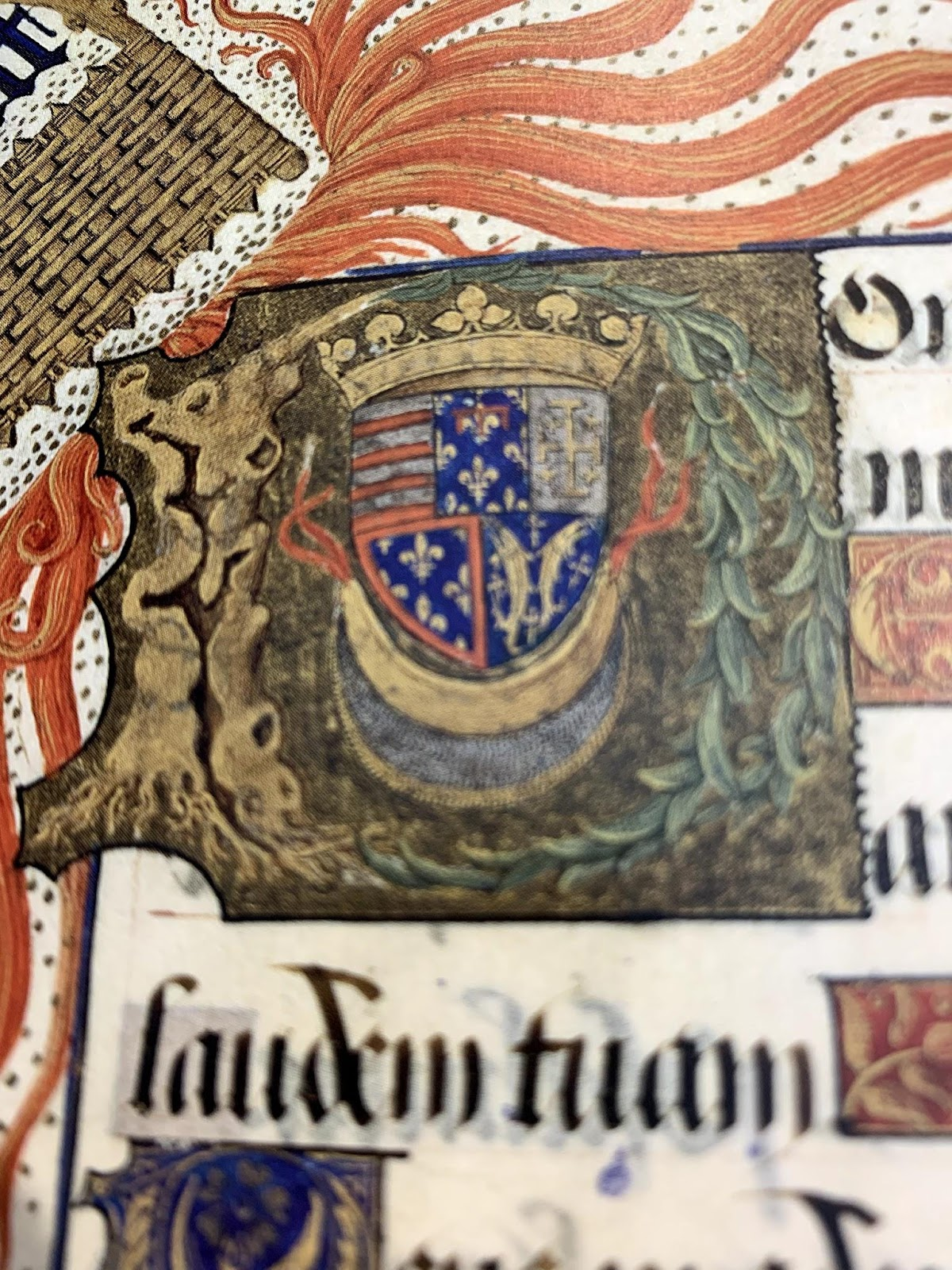 A champ initial 'D' made of a tree stump and branch. Inside, Rene's heraldry and the crescent, all topped with a crown.