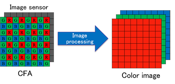 RIT Workshop: Image Processing Algorithms and Color Theory