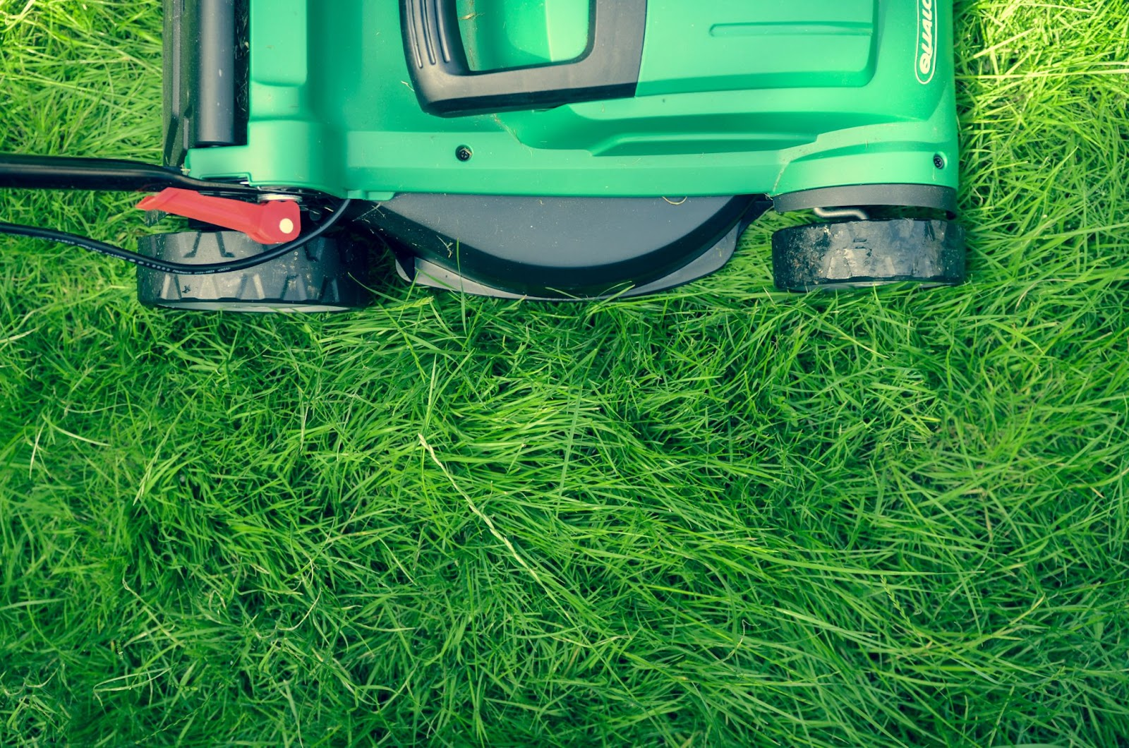 Minneapolis landscaping lawn care tips summer heat