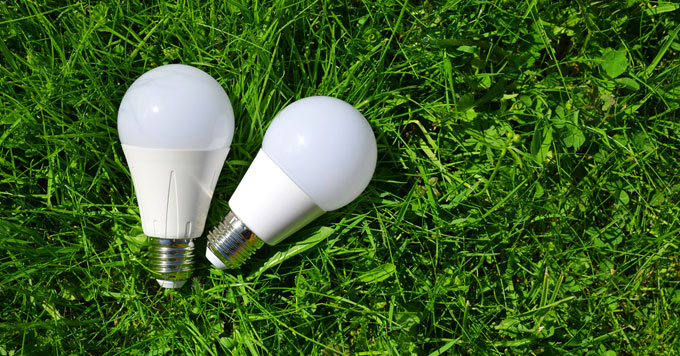 Pair of LED bulbs laying in grass