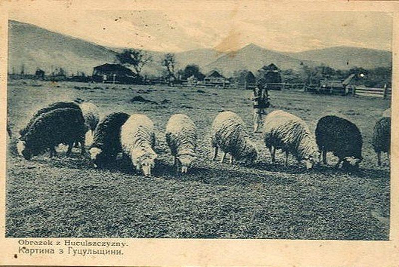 Косів, Сєнковський. 1930 р.