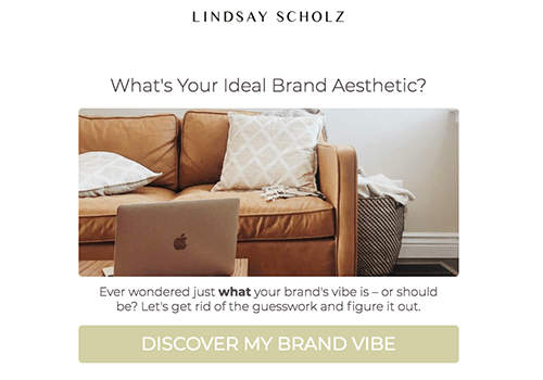 What's your ideal brand aesthetic? quiz cover