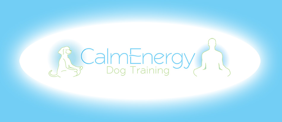 Calm Energy Dog Training
