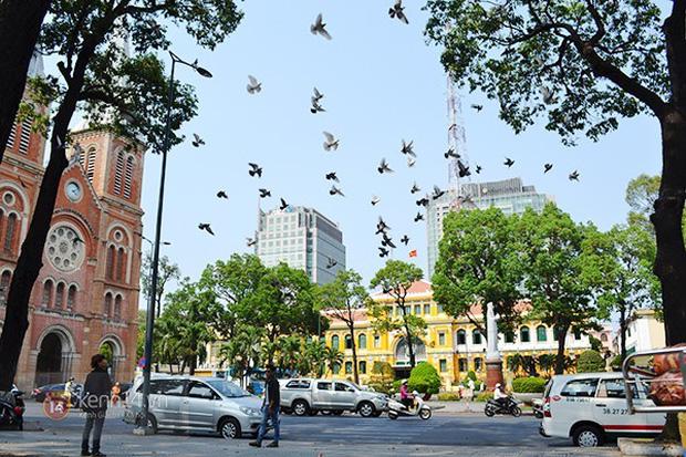 Báo Tây so sánh: Hà Nội - Sài Gòn, du lịch ở đâu cũng thú vị! - Ảnh 5.