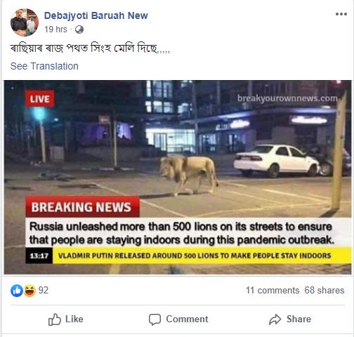 lion 1.png