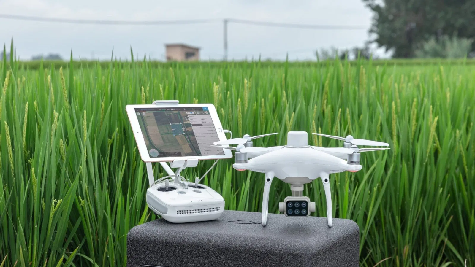 DJI P4 Multispectral drone for precision agriculture