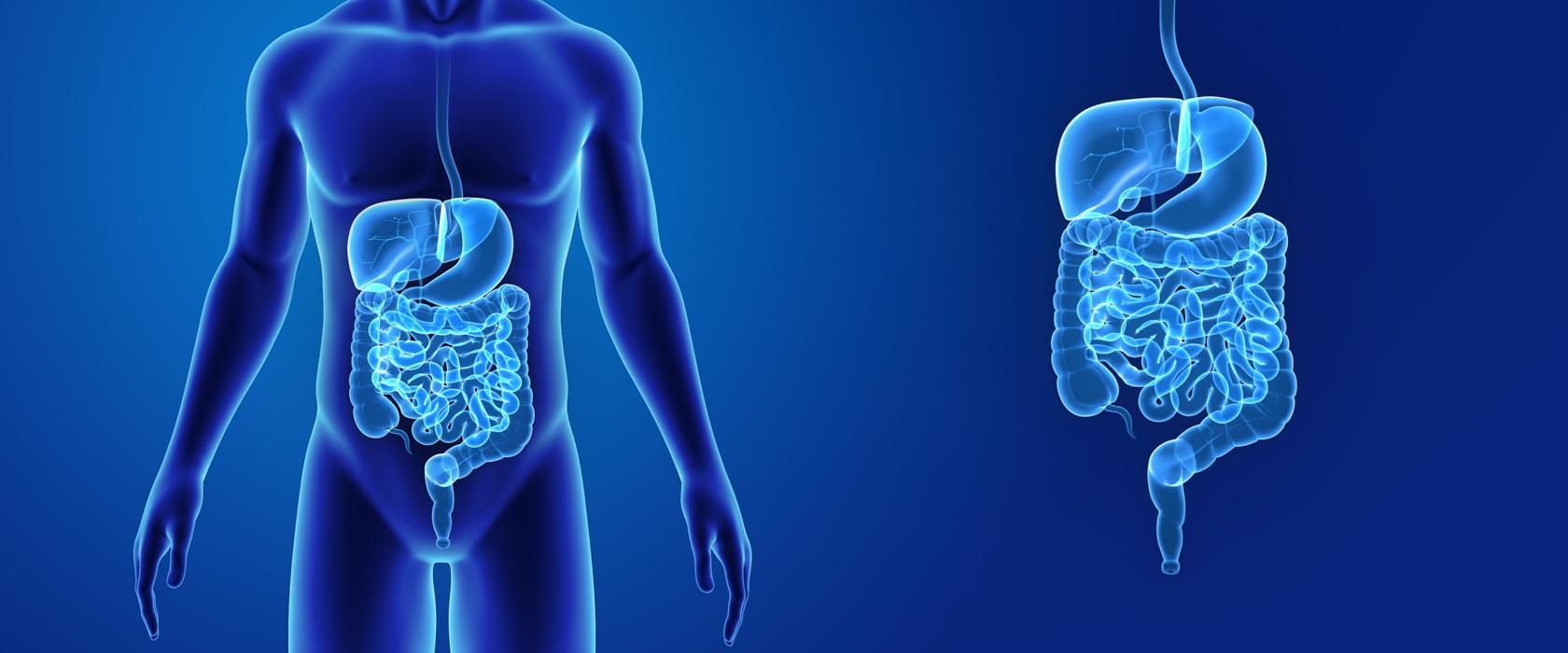 Какие органы страдают при гепатите С?