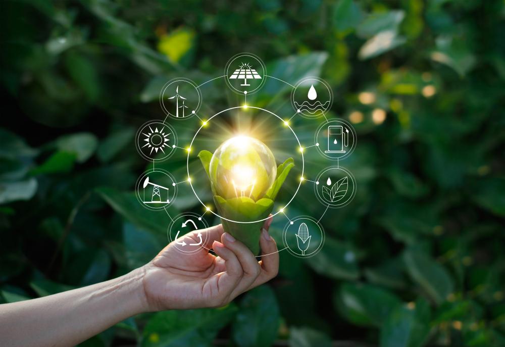 Combinação de energia sustentável e bom sistema de gestão pode ser a melhor resposta para produtores. (Fonte: Shutterstock)