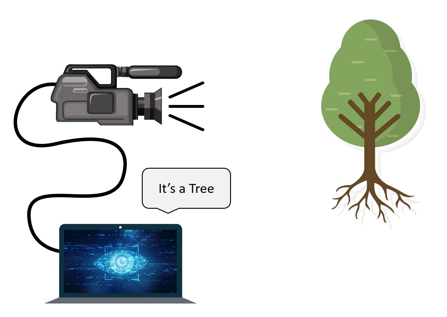 Computer vision Tree