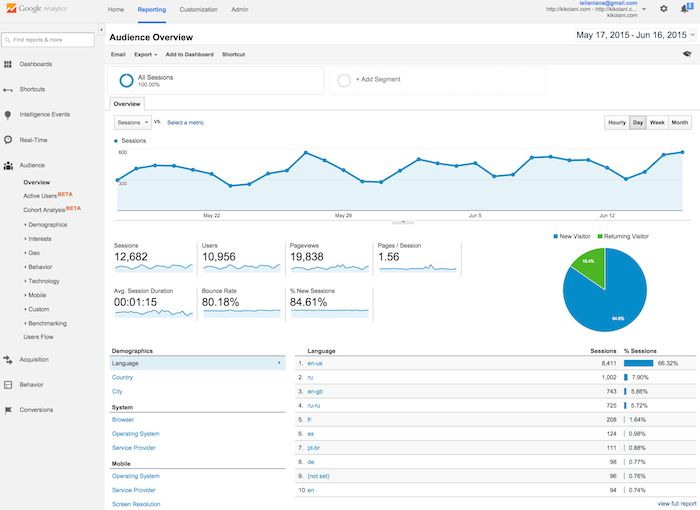 Image shows example of Google Analytics page.