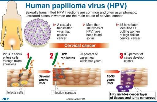 Human-Pappilomavirus.jpg