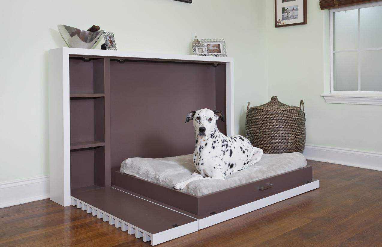 как-организовать-бизнес-по-изготовлению-мебели-для-животных.png