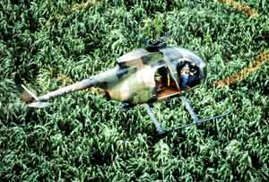 GOVERNMENT SPRAYING WEED