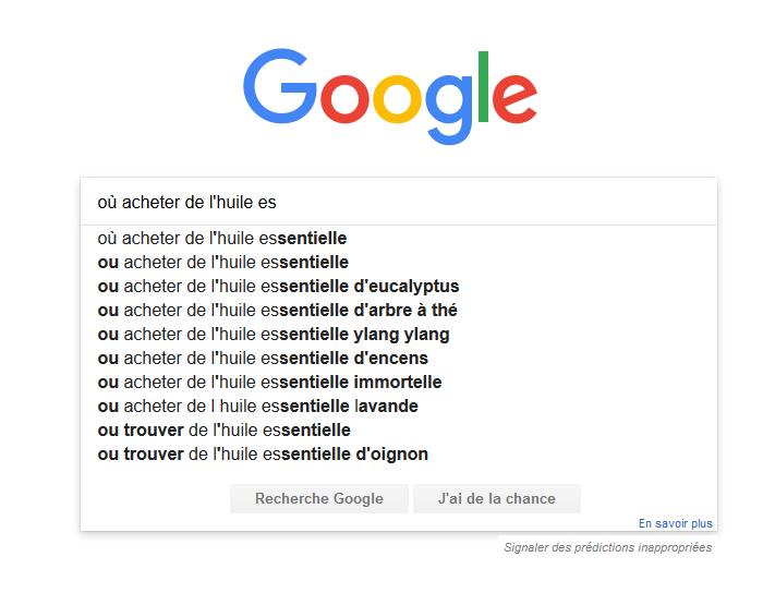 recherches-suggerees-google-exemple